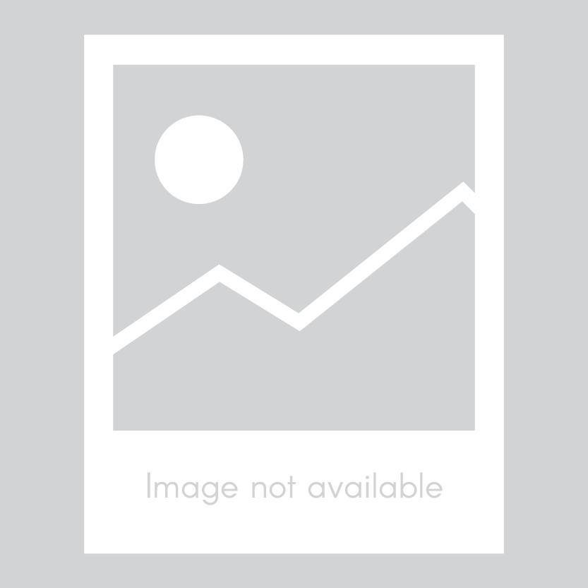Pennisetum Fireworks Image