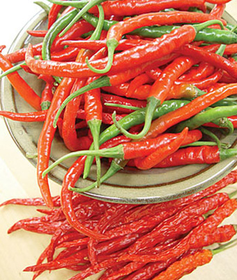 Cayenne Long Slim Image