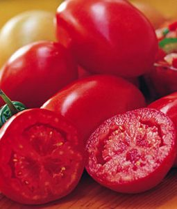 Fresh Salsa Image