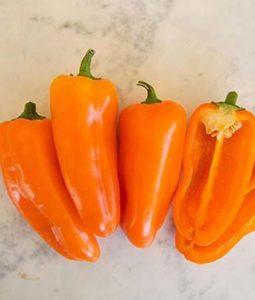 Yummy Orange Image