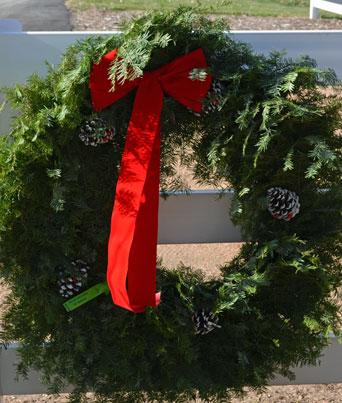 Balsam Wreaths Image
